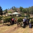 Noyve Brothers Wines, Wollombi, Hunter Valley