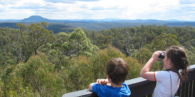 Hunter Valley Bushwalking, Finchley Trig, Yengo National Park
