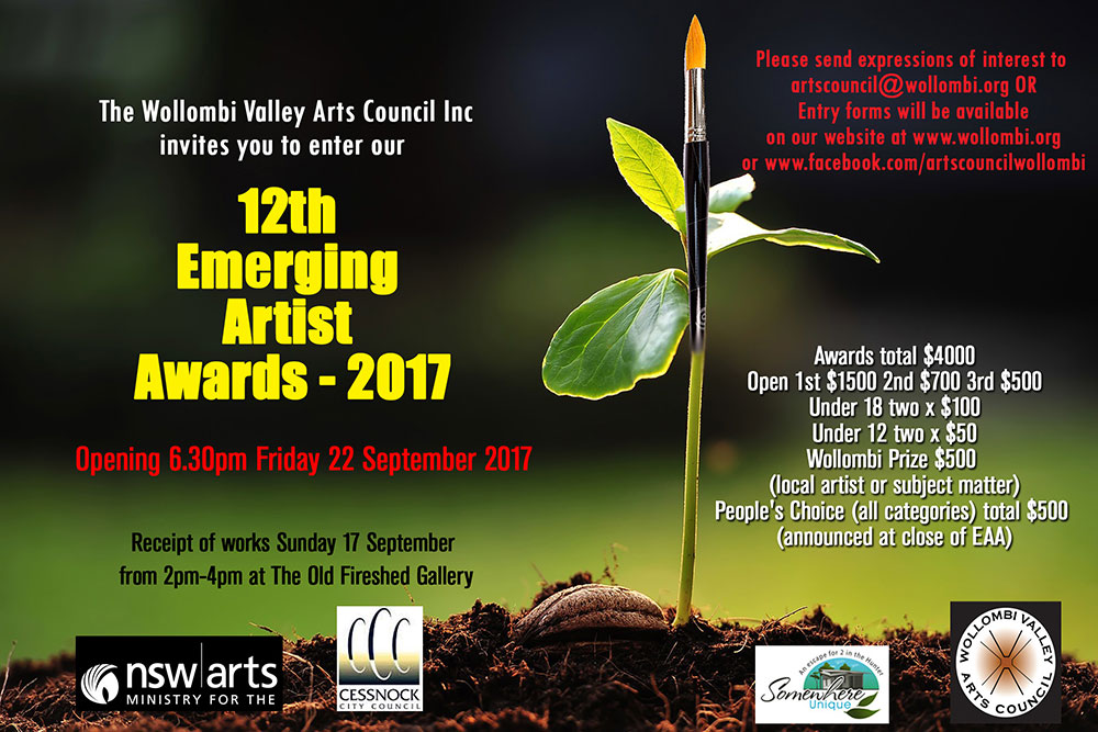 Emerging Artist Awards