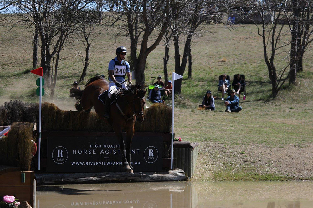 Showjumping and Cross Country