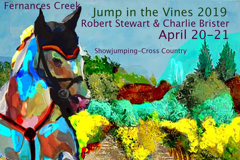 Jump in the Vines at Fernances Creek