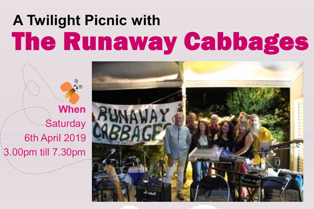 A Twilight Picnic with The Runaway Cabbages