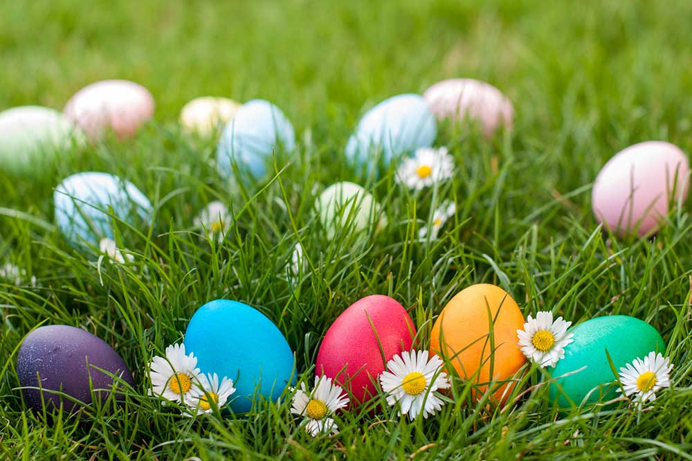 Easter Egg Hunt at Myrtle House