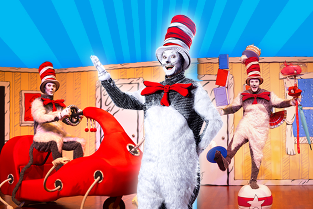 Dr Seuss's - The Cat in the Hat